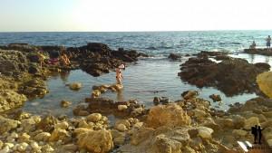 Нелли ищет морскую живность