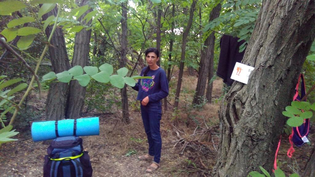 Визитка Бахмут.ру в лесу на М4