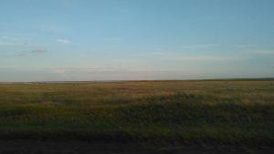 Равнинная местность вокруг Челябинска