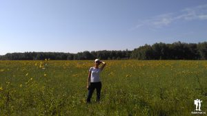 Красотка в поле